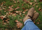 Shoes in fall lawn